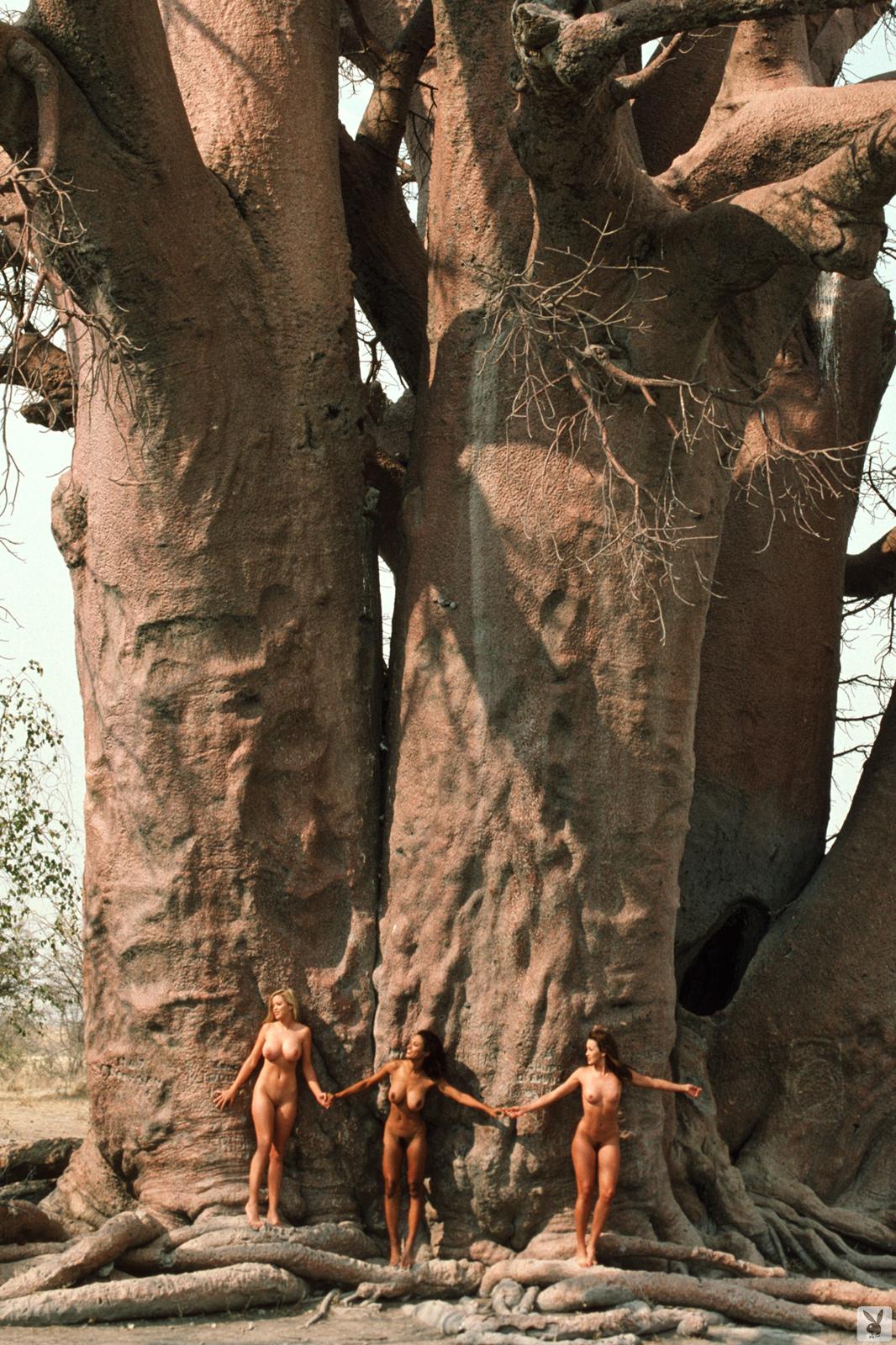 jungle africa porn girls photo